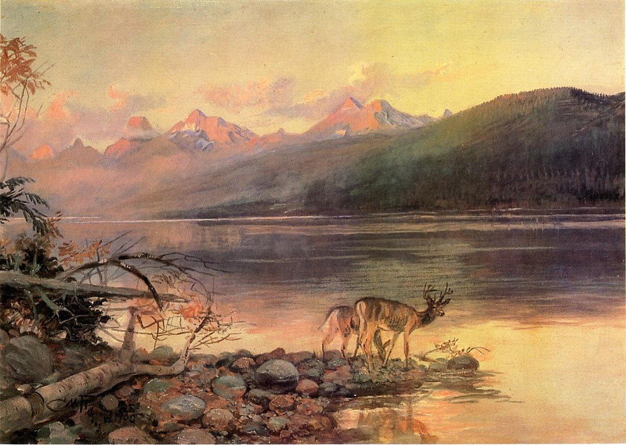 Deer at Lake McDonald - Charles Marion Russell Paintings